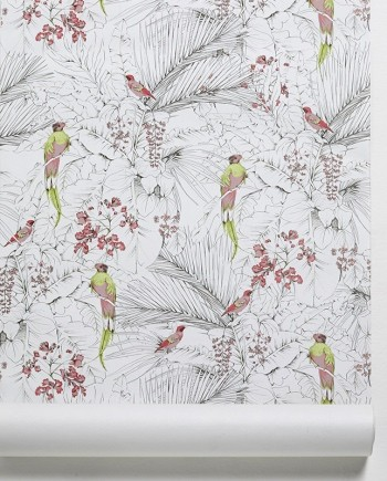 papiers peints jungle oiseaux